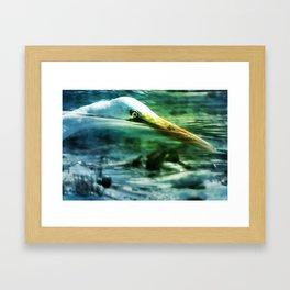 Egret Diving Framed Art Print
