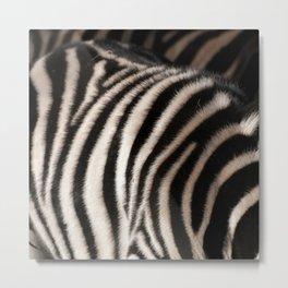 Zebra Print Photo Realism Metal Print