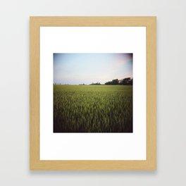 Midwest Field 03, Holga Framed Art Print
