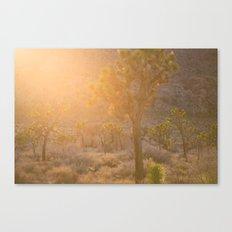 Joshua Tree Canvas Print