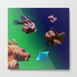 4 Musketeers,  Lionfish. Metal Print