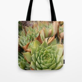 Hens and Chicks Plant Tote Bag