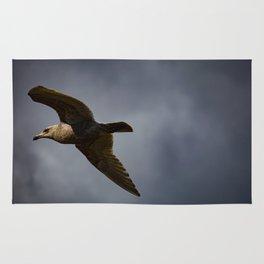 Storm Chaser - Bird flying in Sky Rug