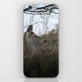 Camouflage Wild Red Deer iPhone Skin
