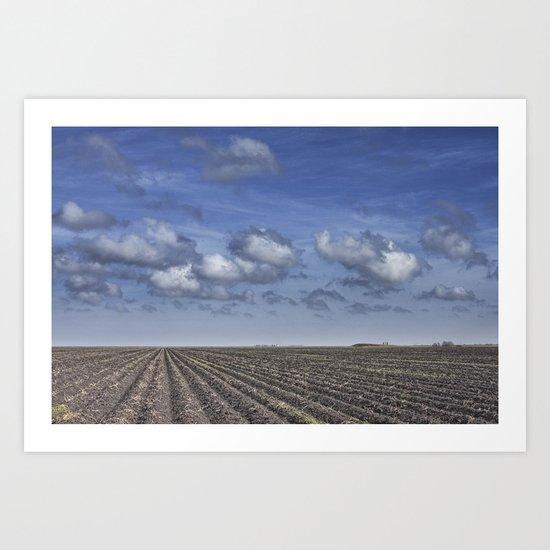Farm Furrows in a Texas Field Art Print