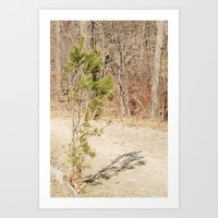 Small Tree Art Print