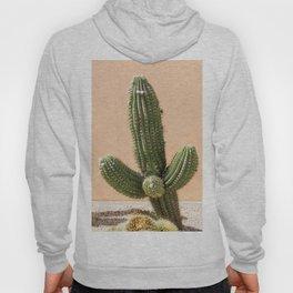 Pastel Cactus II Hoody