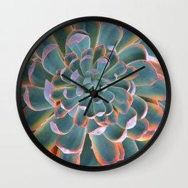 GREY-PINK ECHEVERIA SUCCULENT DESERT PLANT Wall Clock
