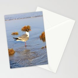 More Than A Memory Stationery Cards