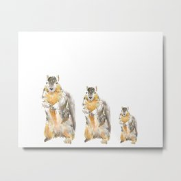 Squirrels Watercolor Print Metal Print