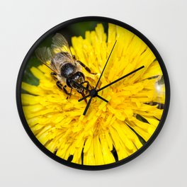 Bees tongue Wall Clock