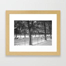Luxembourg Gardens Framed Art Print