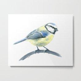Blue tit, watercolor painting Metal Print