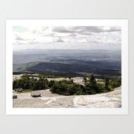 A Summer View Art Print