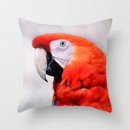 Macaw of Wonder Throw Pillow
