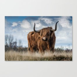 Highlander 2 Canvas Print