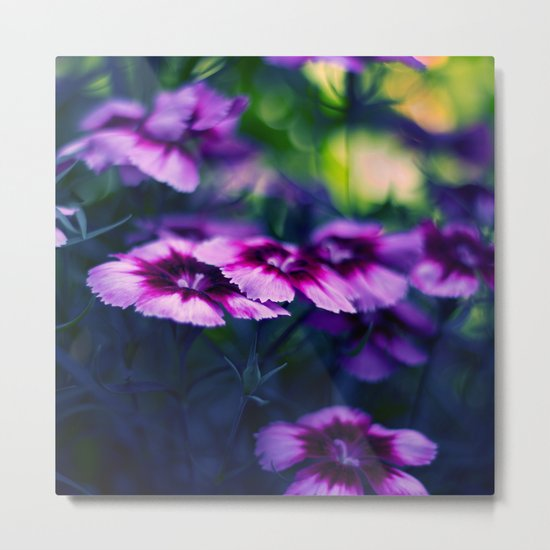 Colors Within Metal Print