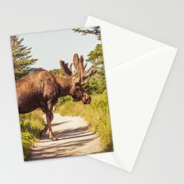 Skyline Trail Moose Stationery Cards