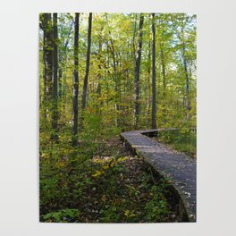 Maidstone conservation area in southern Ontario Poster