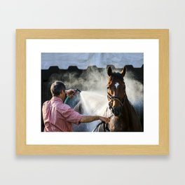 Shower of Power Framed Art Print