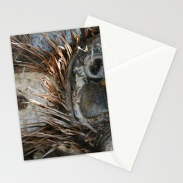 Owly Natural DP170707e Stationery Cards