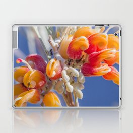 Mornington Grevillea Laptop & iPad Skin