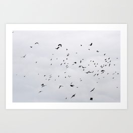 A Murder of Crows Art Print