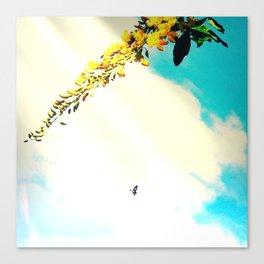 Fly High Canvas Print