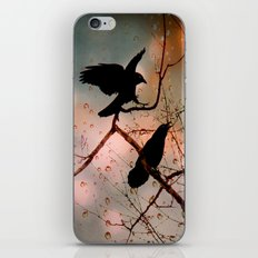 Rainy Day Crows iPhone & iPod Skin
