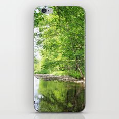 Peaceful Retreat iPhone & iPod Skin