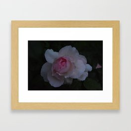 Pink Soul  Framed Art Print