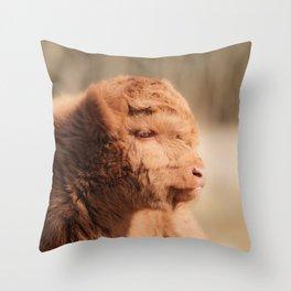 Fluffy Scottish Highland Calf   Animal Photography   Scottish Highland Cow Baby Throw Pillow