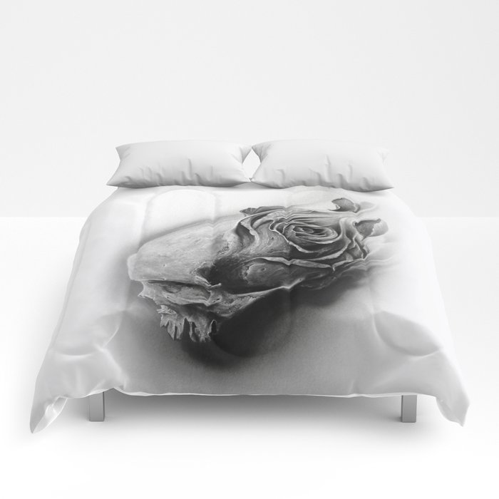 Transitory Comforters