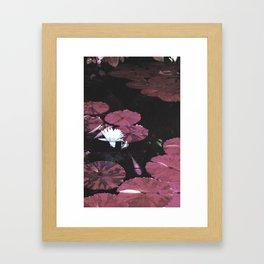 Red Pond Framed Art Print