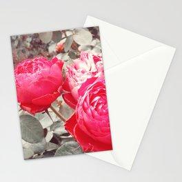 Aged Beauty Stationery Cards