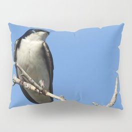 Male Tree Swallow Pillow Sham