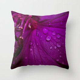 Royal Princess flower macro with water droplets - Floral Photography #Society6 Throw Pillow