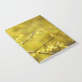 forsythia Notebook