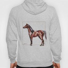 bay horse Hoody