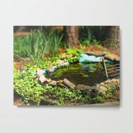 Fairy Pond Metal Print