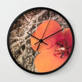 Desert Mariposa Lily Wall Clock