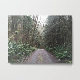 Pacific Northwest Forest Road Metal Print