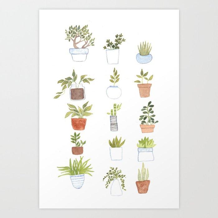 Potted Plants Kunstdrucke
