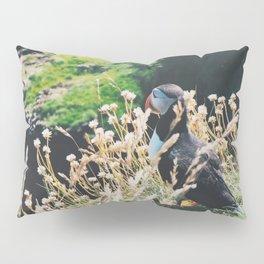 Puffin On Staffa Island Pillow Sham