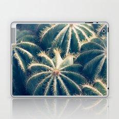 Southwest Cactus Garden Laptop & iPad Skin