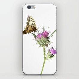 Scarce Swallowtail Butterfly Resting On Thistle Flower iPhone Skin