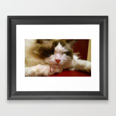 I am turning into a crazy cat lady Framed Art Print