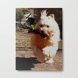 """I got the stick!"" Metal Print"