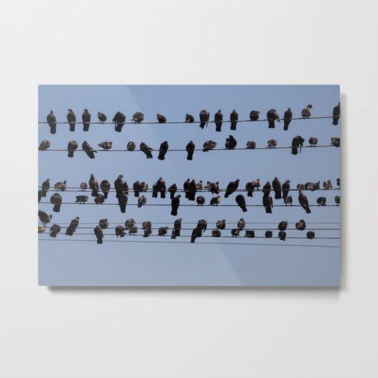 Black Birds Metal Print
