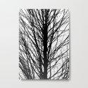 Branches 5 by jackgraberillustration